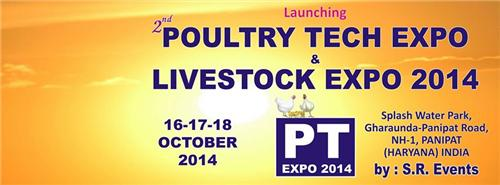 Trade Exhibitions in Panipat