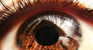 Eye Banks in Patan