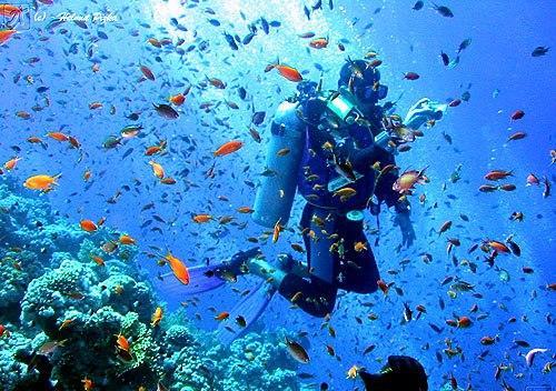Tourism in Port Blair