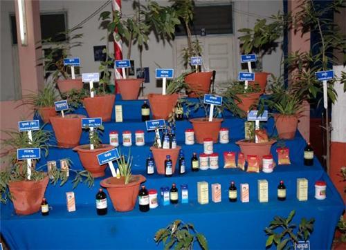 Ayurveda Medicine Stores in Pune