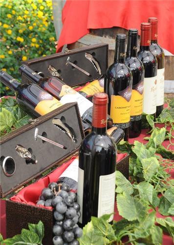 Annual Wine Tasting Festival in Pune