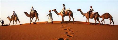 Sand Dunes in Rajasthan
