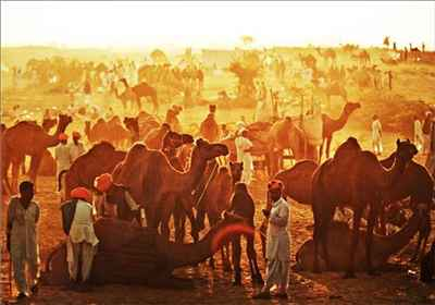 Culture of Pushkar