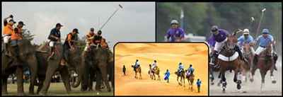 Sports in Rajasthan