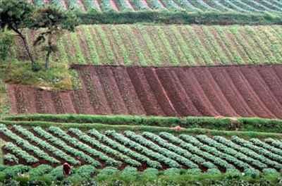 Economy of Shillong