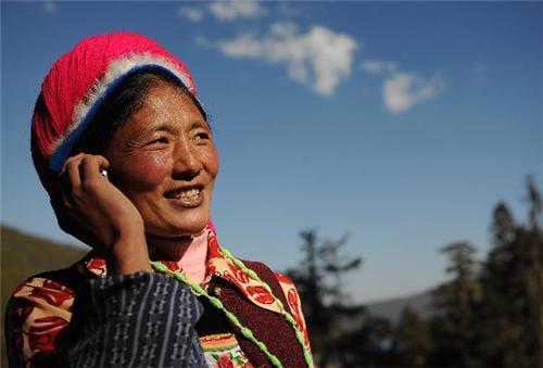 Telecommunication Business in Shimla
