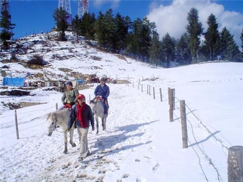 Adventure at Kufri Hill Station