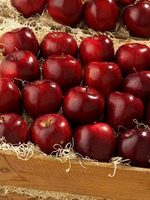 Fresh Fruits Shopping in Shimla