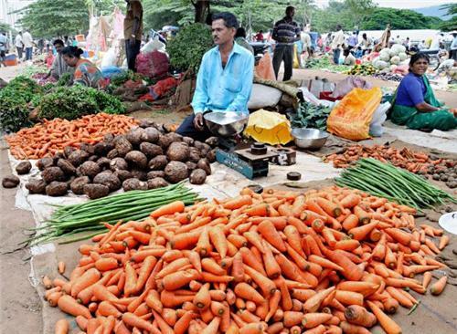Fresh vegetables in the Shimogan Market