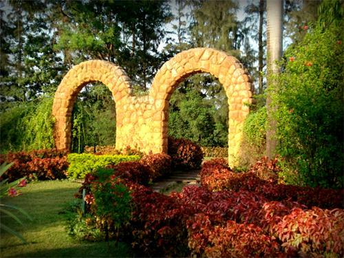 Hirwa Van Garden