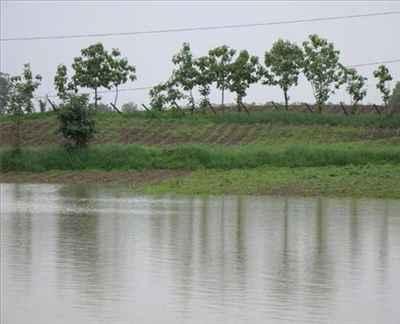 Penganga River