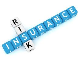 Insurance  companies in Bhainsa