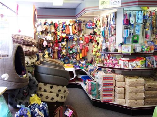 Pet Shops in Thane