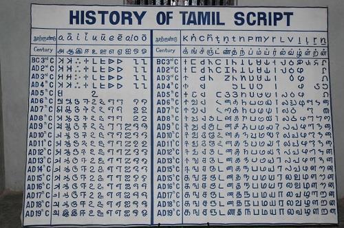 Tamil Script