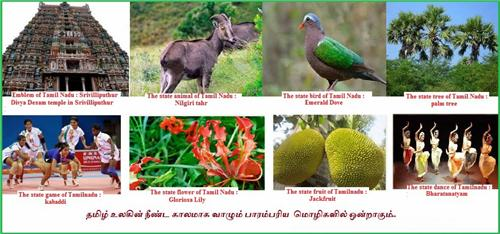 Tamil Nadu State Symbols