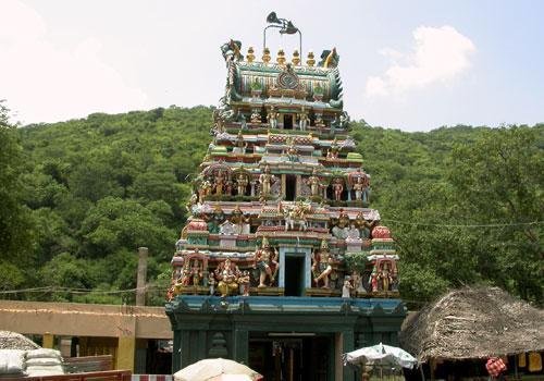Murugan Temple Pazhamudhircholai