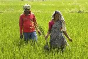 Economy in Chidambaram