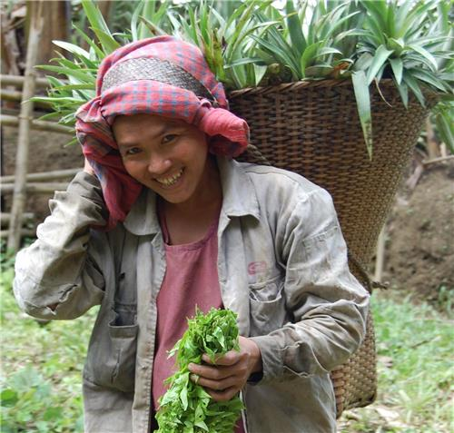 Reang woman with jhum crops