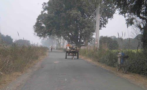 Ganga canal road in Manglaur