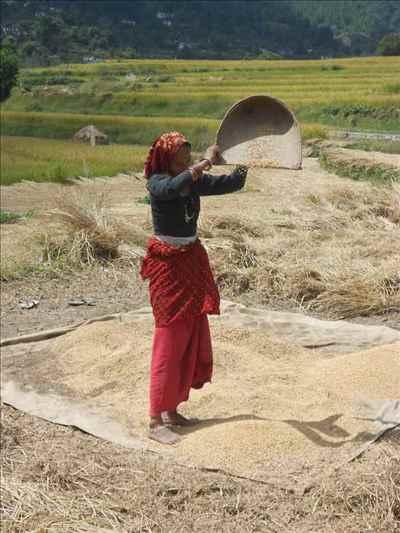 Economy of Uttarakhand