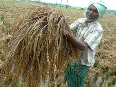 Business and Economy of Vijaywada
