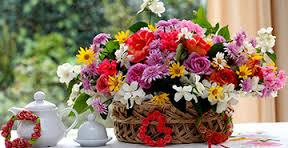 Florists in Visakhapatnam