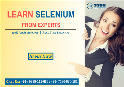 Learn Selenium From Experts With Live Project Paid Training