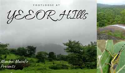 Monsoon trail at Yeoor Hills