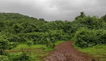14 July Beginner s Trail at Sanjay Gandhi National Park