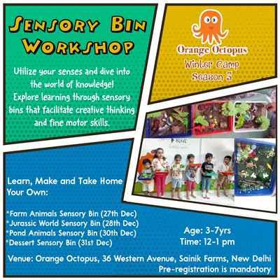 Sensory Bins Workshop