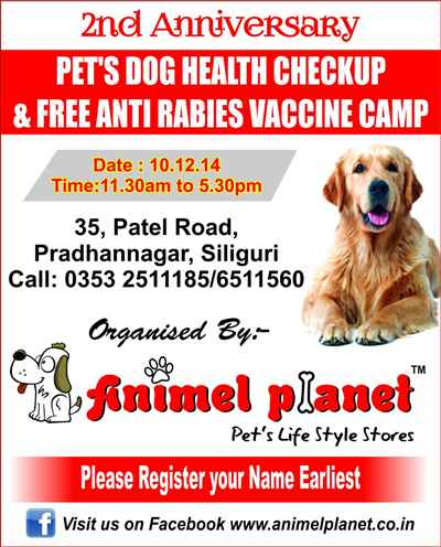 Animel Planet, 2nd Anniversary free Camp for pets