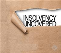 AAA Insolvency Profesional LLP