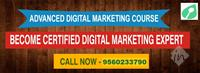 Sangal Institute of Digital Marketing