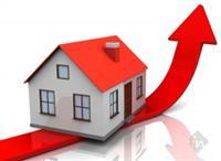 Bhavya Investors Zone