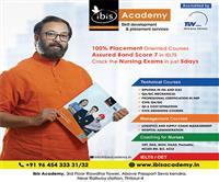 ibis Academy
