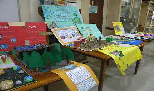 Social Science Exhibition