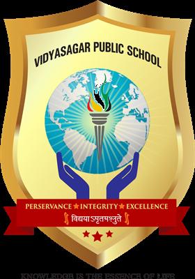 Vidhya Sagar Public School