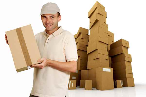Professional Packers movers