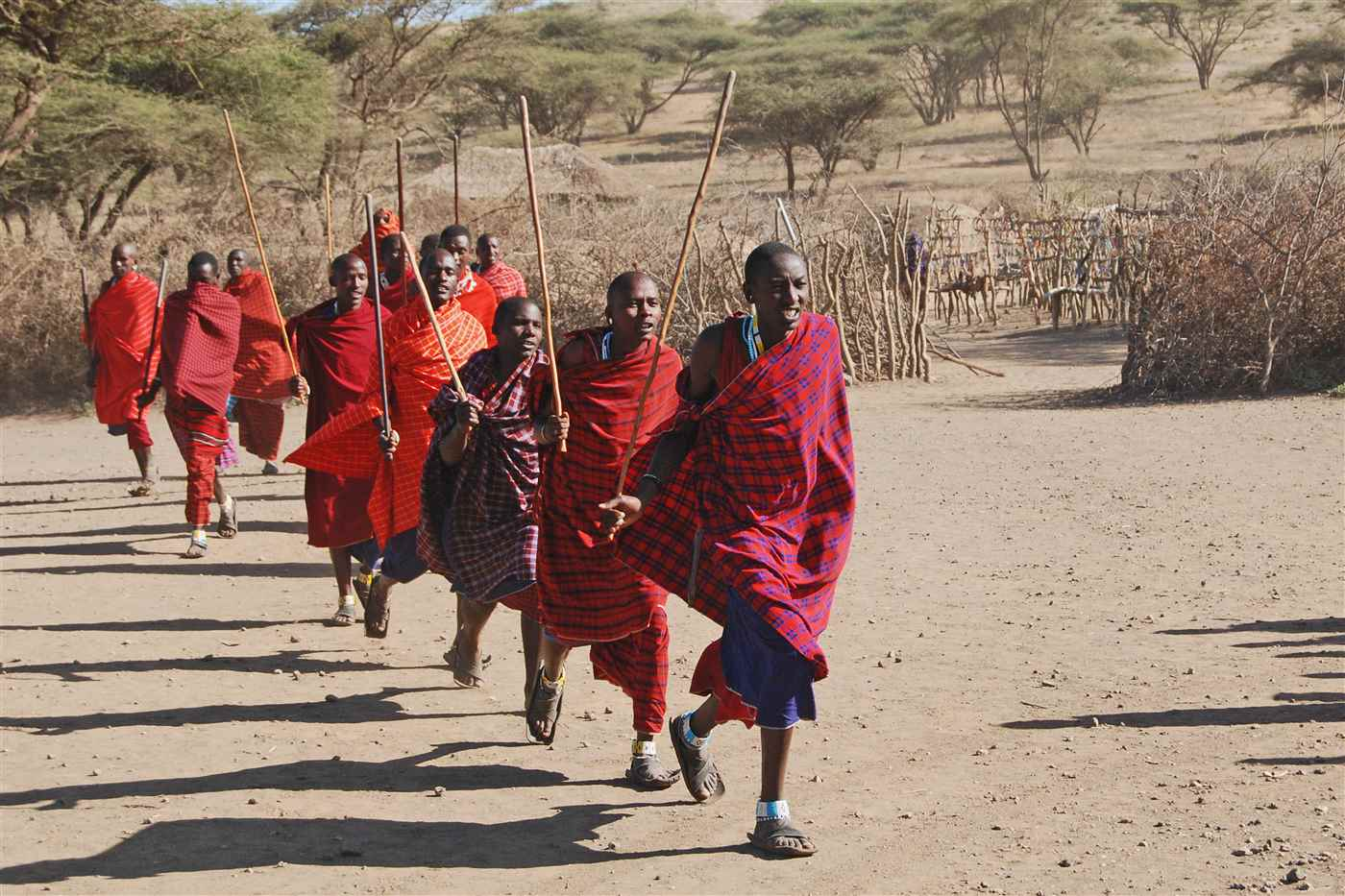 Maasai Bomas