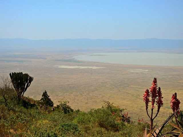 Ngorongoro National Park 8