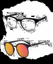 Shreeji Optics