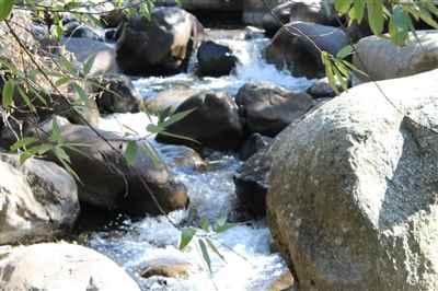 Maountain River