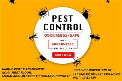 Unique Pest Management