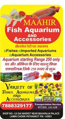 Maahir Fish Aquarium Pathankot