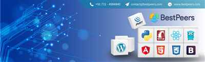 Bestpeers Infosystem Pvt. Ltd