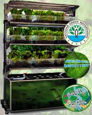 Vatodar Green Waterfarms