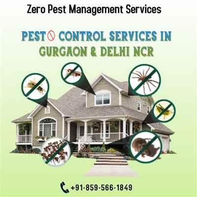 Zero Pest Management Services
