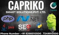 Capriko Smart Solutions Pvt. Ltd.