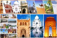 Shree Sai Tours & Travels