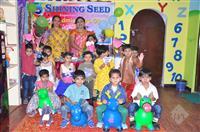 Shining Seed